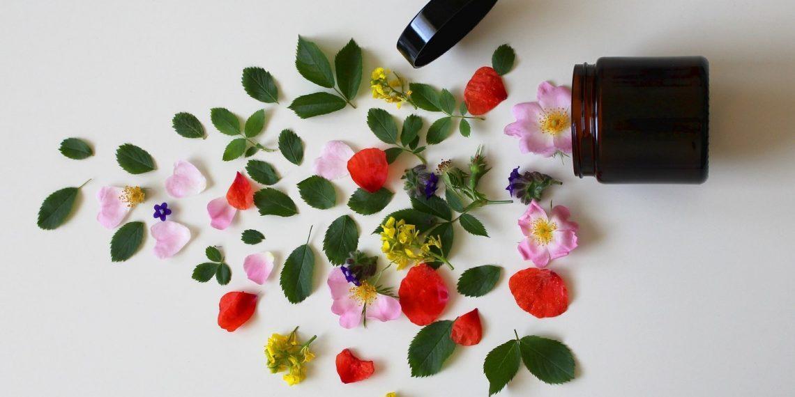 Die Natur ist doch die beste Kosmetikerin! Natürliche Pflegeprodukte für Gesundheit und Schönheit